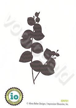 Eucalyptus Stem 2
