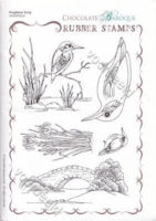 Kingfisher Song
