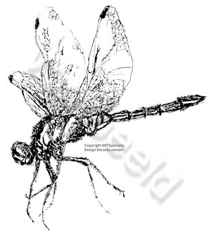 Libelle 8