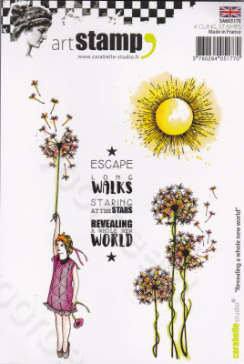 Revealing a Whole New World