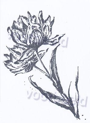 bloem 7