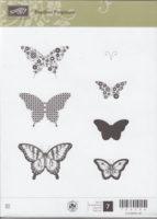 Papillon Potpourri