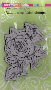 Timeless Rose