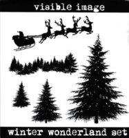 Visible Image - Winter Wonderland