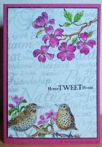 sheet 141 en dogwood blossoms