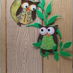 su Owl Builder