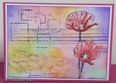 Katzelkraft fleurs