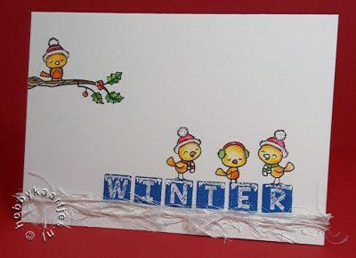 Word Critters Winter Birds