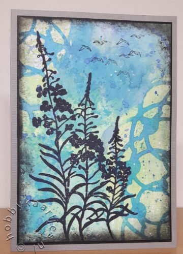 Sheena Douglass - Silhouette Wildflowers